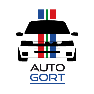 Robbert Gort